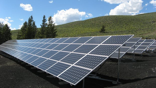 Extra large solar panels in a green field with trees belonging to a sustainable business.